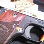 Free – How to Clean a Gun!